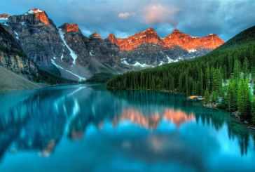 Photo by James Wheeler on Pexels.com